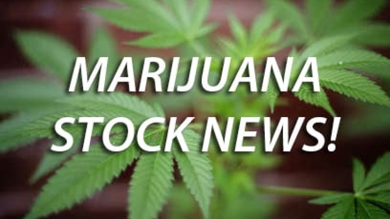 List Of Marijuana Stocks | Pot Stock List | MarijuanaStocks com