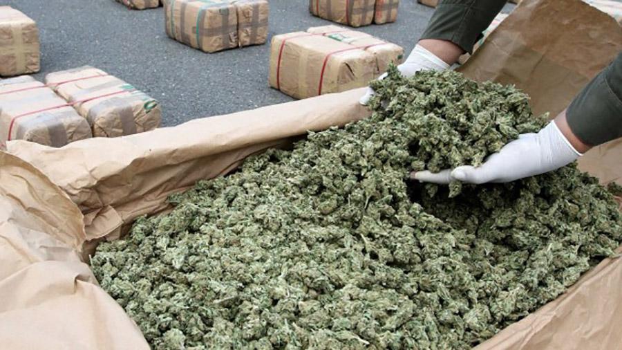 Marijuana-Stocks-Washington