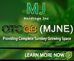Marijuana Stocks MJNE