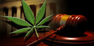 2014 Marijuana Legislation Recap