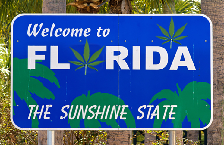 Florida Grants 5 Licenses For New Dispensaries