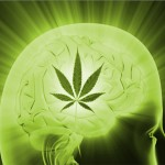 Marijuana-Stocks-brain weed