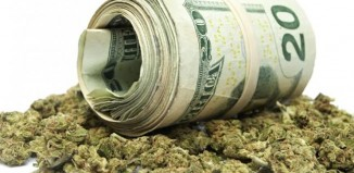 Marijuana-Stocks-weed and money