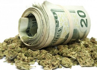 Marijuana-Stocks-weed and money