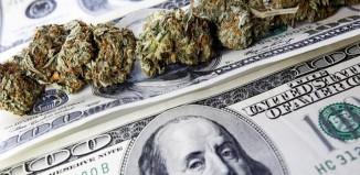marijuana-stocks-cannabis-benjamins