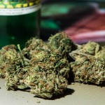 Marijuana-Stocks-nug-6