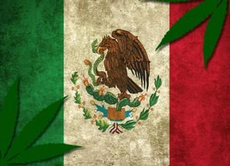 Marijuana-Stocks-Cannabis-Mexico