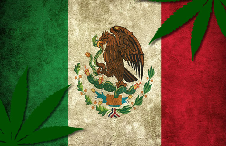 Marijuana-Stocks-Cannabis-Mexico