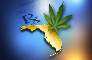 marijuana-stocks-cannabis-florida