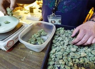 Marijuana-Stocks-nugs-1
