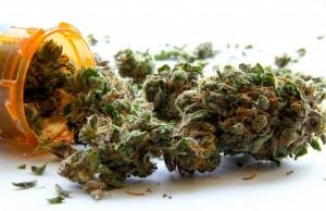 Marijuana-Stocks-Cannabis-weed-11