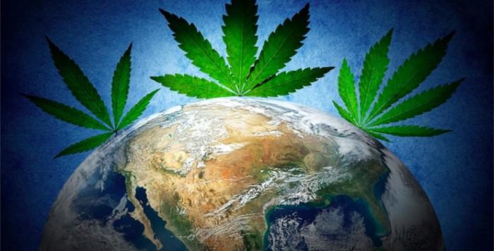 marijuana-stocks-cannabis-globe