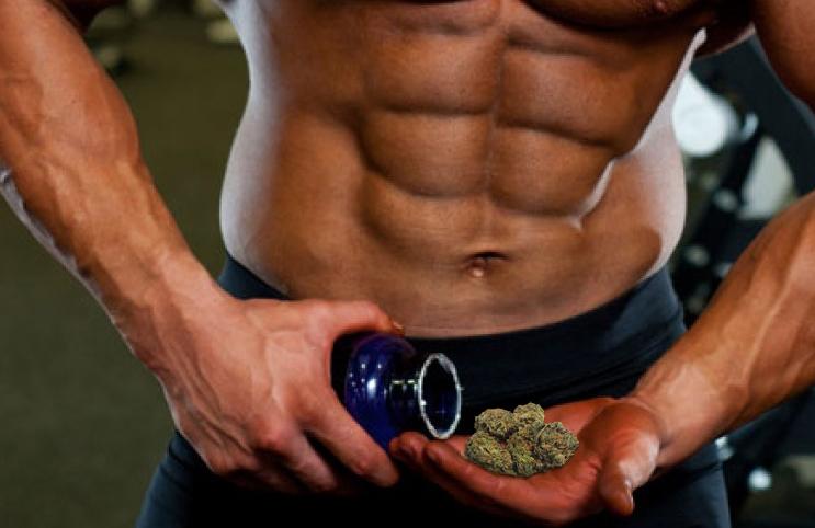 Image result for bodybuilder weed