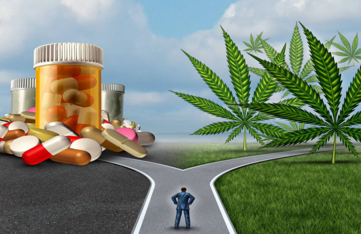 prescription painkillers versus medical marijuana