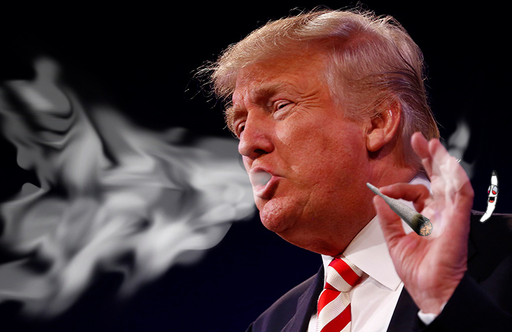 http://marijuanastocks.com/trump-administration-reacts-to-the-rapidly-growing-marijuana-industry/