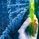 Marjuana-Stocks-cannabis biotech