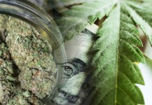 marijuana stocks august 16