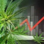 marijuana stocks for consumers