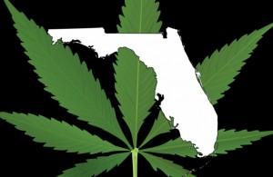 Florida-cannabis-