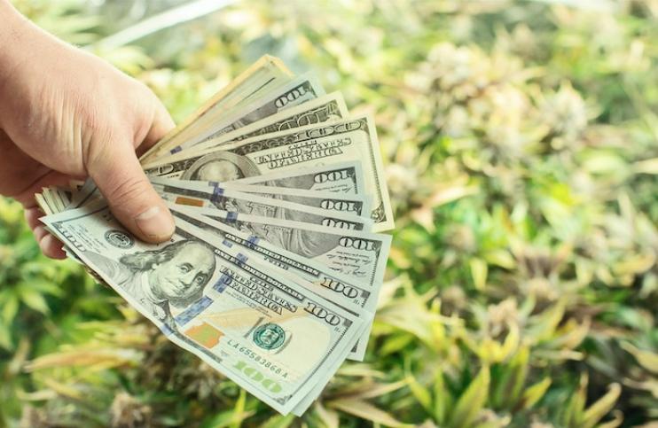 Marijuana Money1
