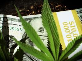 marijuana stock trending