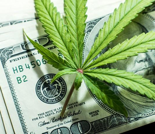 marijuana stocks cannabis investing