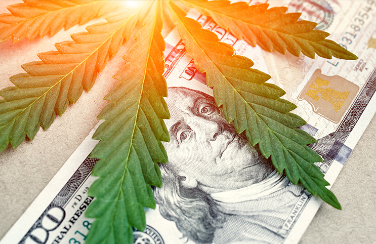 marijuana stocks future outlook