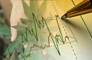 marijuana stocks news