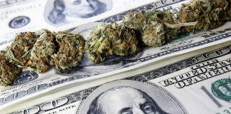Marijuana-money-stocks