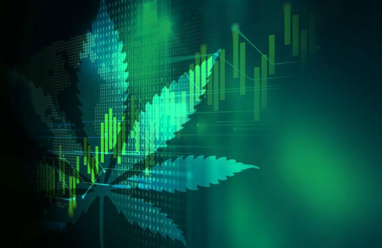 divis biotech pvt ltd shareholders