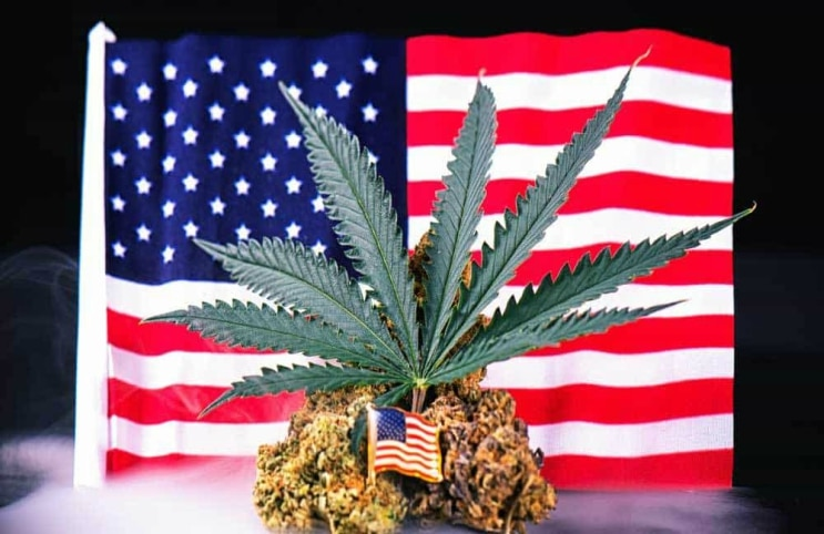 VA New Medical Marijuana