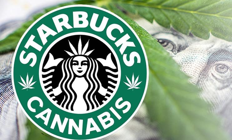 starbucks_marijuana_cannabis