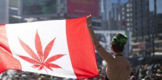 Canada marijuana stocks