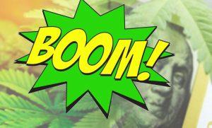 marijuana stock boom
