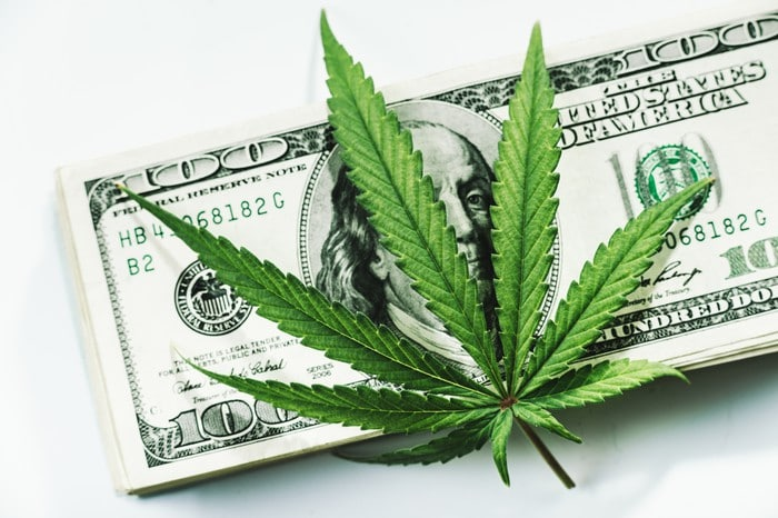 June Brings Good News for Marijuana Stocks