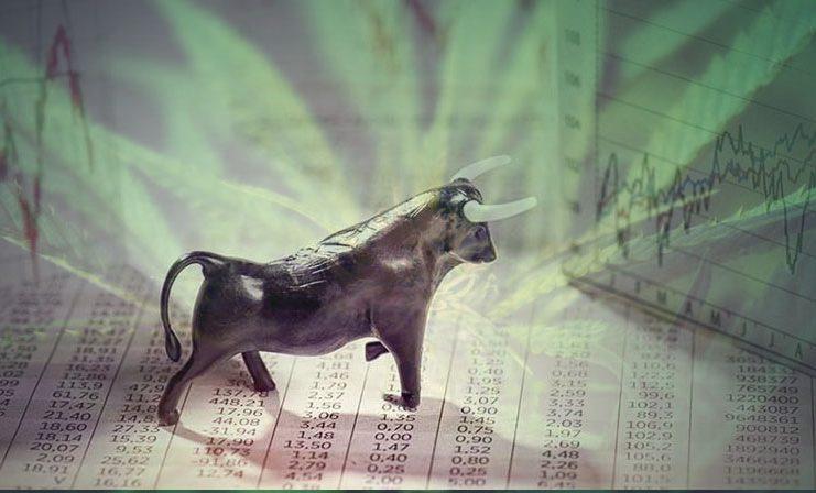 Marijuana Stocks Investments And News Marijuana Stocks