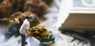 marijuana stocks 2.0