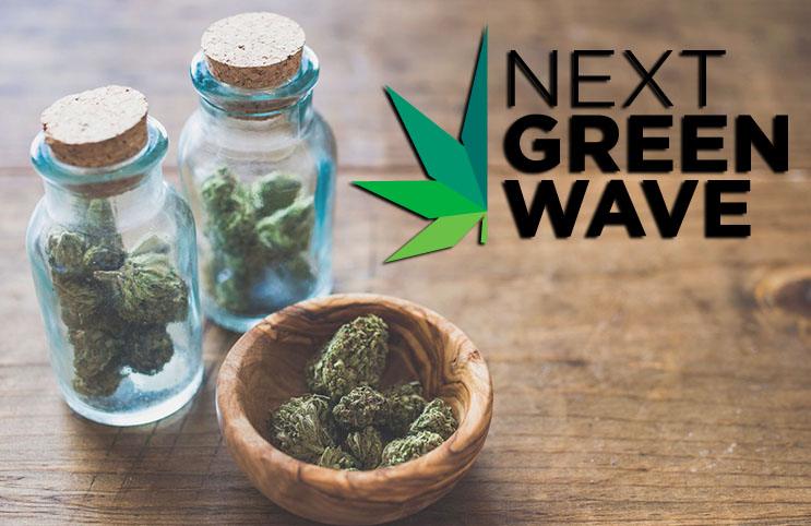 next green wave pot stocks