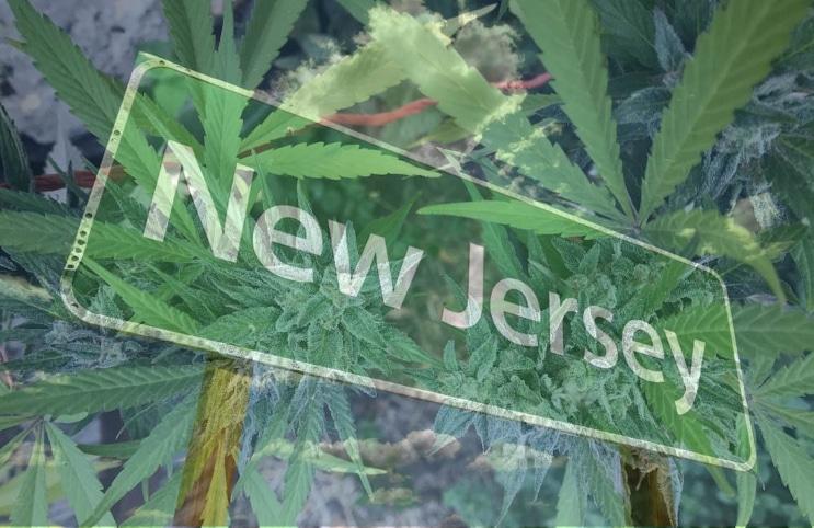 Marijuana-New-Jersey