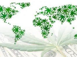 marijuana stocks global