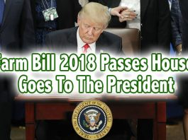 farm bill trump house senate pass