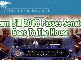 farm bill vote marijuana stocks