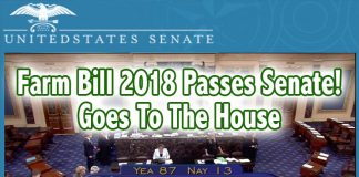 farm bill vote marijuana stocks