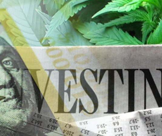 marijuana stocks investing