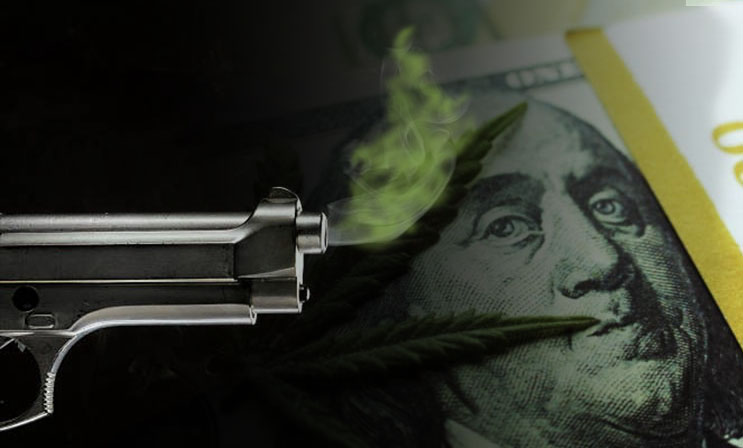 marijuana stock smoking gun
