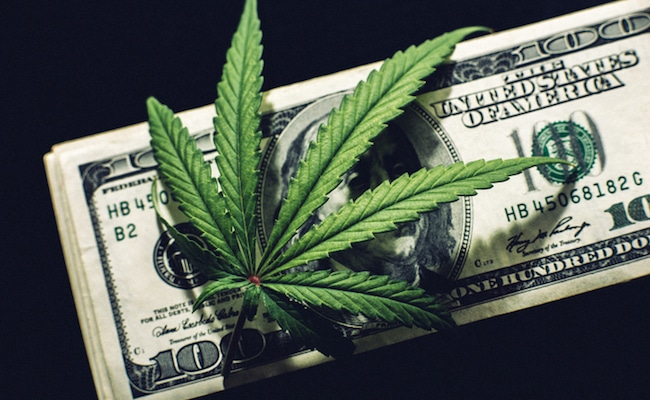 marijuana stocks news articles june
