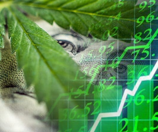 marijuana stocks news articles