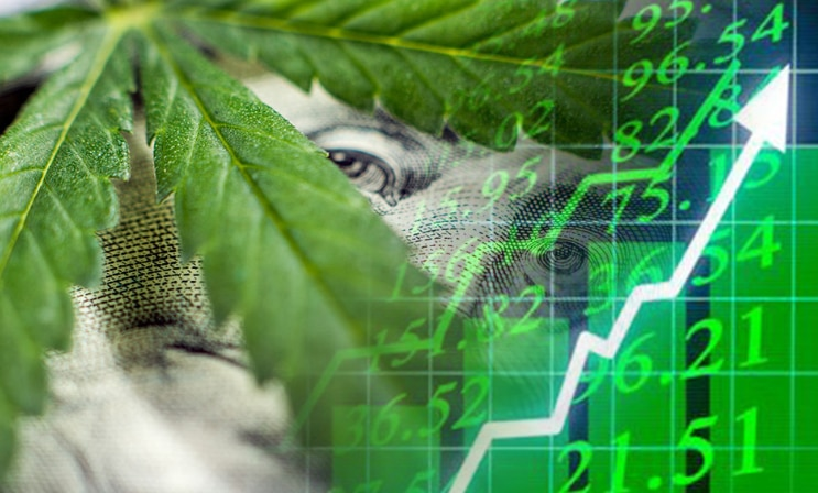 marijuana stocks news articles