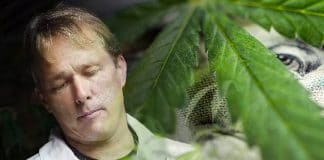marijuana stocks bruce linton