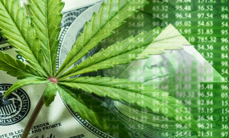 Marijuana Stocks | Cannabis Investments and News  Roots of a